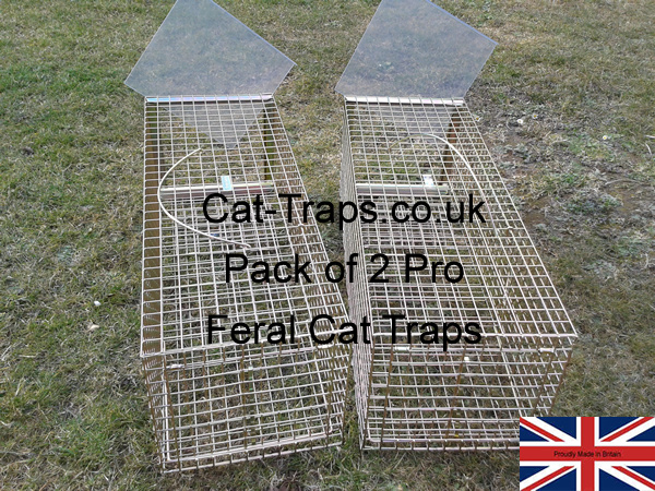 two pro gold feral cat traps